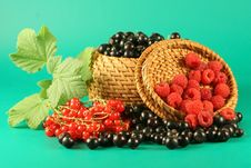 Free Berries In A Basket. Royalty Free Stock Photos - 2745678