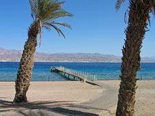 Free Tropical Beach In The Red Sea Stock Photography - 2746702