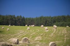 Sommer Landscape Royalty Free Stock Photo