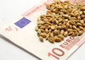 Free More Money For Wheat Now Stock Photos - 27403983