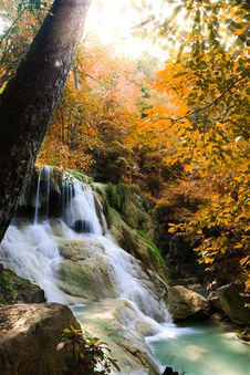 Free Deep Forest Waterfall Stock Images - 27404304