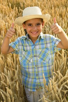 Free Young Smiling Healthy Boy In Fileld Of Wheat Royalty Free Stock Photos - 27414218