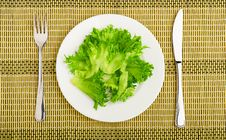 Free Diet Concept. Green Lettuce On A Plate Stock Photography - 27415622