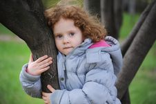 Free Curly Girl On A Tree In The Park Royalty Free Stock Photo - 27425385