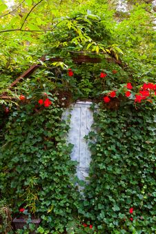 Ivy Covered Door Royalty Free Stock Images