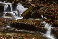 Free Forest Stream Royalty Free Stock Image - 27429276