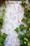 Free Ivy Covered Door Stock Photography - 27428682
