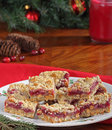Free Christmas Cranberry Bars Stock Photography - 27438532