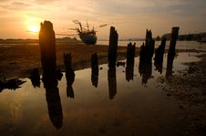 Squid Boats Landing Between The Stumps. Royalty Free Stock Images