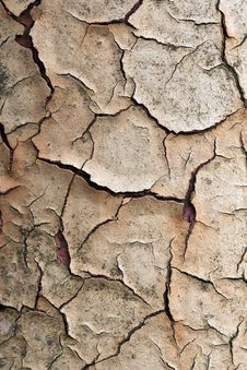 Free Cracked Paint Stock Photography - 27438292