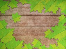 Free Green Maple Leaves Over Wooden Background Royalty Free Stock Photo - 27441095