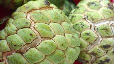 Free Close Up Of Sugar Apple Custard Apple Royalty Free Stock Images - 27441509