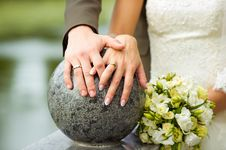 Wedding Rings And White Flowers Stock Image