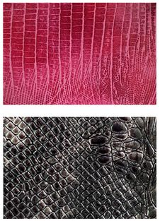 Free Pattern Snake Skin Leather Stock Photos - 27445633
