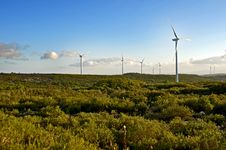 Free Wind Energy Park Royalty Free Stock Photo - 27448215