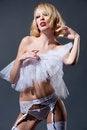 Free The Erotic Elegance Stock Photography - 27451832