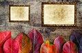 Free Autumn Background Royalty Free Stock Photos - 27452148