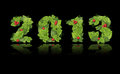 Free New Year 2013. Date Lined Green Leaves Stock Images - 27452414