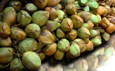 Free Cocunuts Stock Photo - 27452050