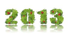 Free New Year 2013. Date Lined Leaves With Red Berry. Royalty Free Stock Photo - 27452435