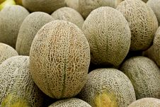 Free Rock Melon Royalty Free Stock Image - 27453756