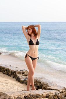 Young Woman In Bikini Posing On Sea Coast Stock Images