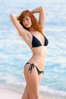 Free Young Woman In Bikini Posing On Sea Coast Stock Photography - 27453822