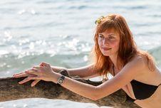 Woman In Bikini Posing On Branchy Log In Water Royalty Free Stock Photo