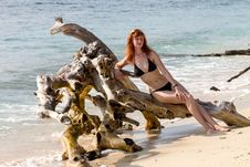 Woman In Bikini Posing On Branchy Log In Water Stock Photo