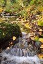 Free Autumn Stream Royalty Free Stock Photo - 27461345