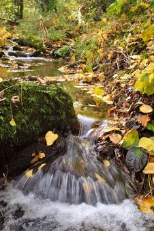 Free Autumn Stream Royalty Free Stock Photo - 27461345