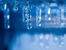 Free Blue Icicles Royalty Free Stock Photo - 27464685