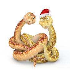 Free Snake 2013 Royalty Free Stock Photo - 27465255