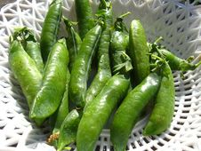 Fresh Green Pods Of Peas Stock Photos