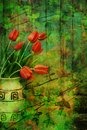 Free Grunge, Spring Background With Red Tulips Stock Photo - 27476330