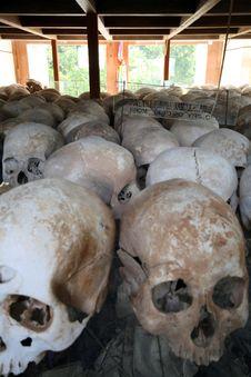 Free Lots Of Human Skulls Royalty Free Stock Photos - 27472938