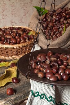 Free Still Life With Chestnuts Stock Images - 27474304