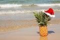Free Pineapple At Santa Hat . Stock Photography - 27487102