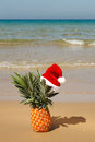 Free Pineapple At Santa Hat . Stock Images - 27487114