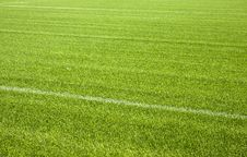 Free Football Grass Background Royalty Free Stock Photo - 27481835