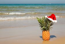 Free Pineapple At Santa Hat . Stock Photo - 27487070