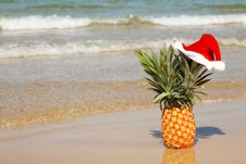 Free Pineapple At Santa Hat . Stock Photography - 27487102
