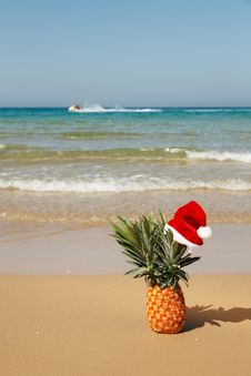 Free Pineapple At Santa Hat . Royalty Free Stock Image - 27487156