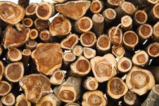 Free Freshly Cut Logs Stock Photo - 27488220