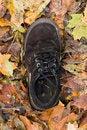 Free Shoe Stock Photos - 27490493