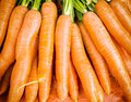 Free Carrots Stock Photography - 27496862