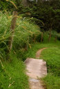 Free Get On The Path Stock Photos - 2757003