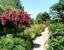 Free Summer Garden Royalty Free Stock Image - 2750006