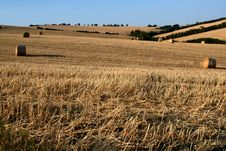 Free Marche Countryside Scene Stock Images - 2750704