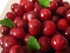 Free Close-up Of Fresh Cherry Stock Photography - 2753982